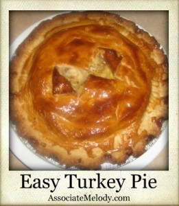 easy turkey pie