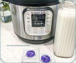 homemade yogurt ingredients